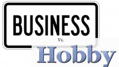 hobby or business